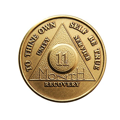 11 Month Bronze AA (Alcoholics Anonymous) - Sober / Sobriety / Birthday / Anniversary / Recovery / Medallion / Coin / Chip - 1