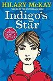 Indigo's Star (Casson Family) (0340875798) by McKay, Hilary