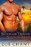 The Billionaire Dragon Shifter's Mate: BBW Paranormal Romance (Gray's Hollow Dragon Shifters Book 1)