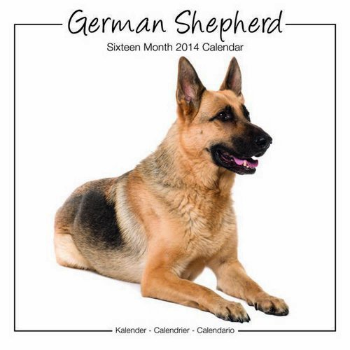 German Shepherds 2014 Calendar