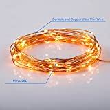 Homestarry® Dimmable String lights PRO/ 33Feet /100 LEDs Warm White/ Copper Wire/ Remote Control Dimmer/ 12V Power Adapter/Perfect for Indoor and Outdoor Environments - 100% Satisfaction Guarantee.