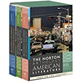 The Norton Anthology of American Literature (Eighth Edition) (Vol. Package 2: Vols. C, D, E) 8th (eighth) Edition published by W. W. Norton & Company (2011)
