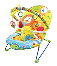 Animals Themed Bouncer Keep's Baby Calm & Comfortable - Vibrating Chair