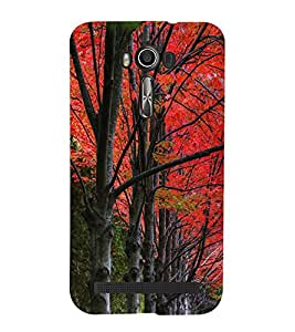 Beautiful Trees 3D Hard Polycarbonate Designer Back Case Cover for Asus Zenfone 2 Laser ZE500KL (5 INCHES)