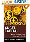 Angel Capital: How to Raise Early-Stage Private Equity Financing