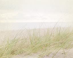 Neutral Seagrass Beach Photograph, 8x8 to 40x60 inches, Photographic or Watercolor Print