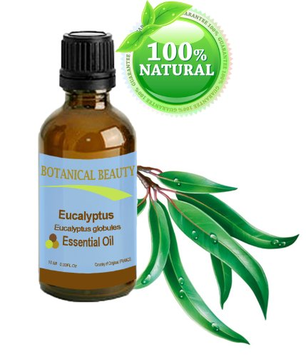 Botanical Beauty Eucalyptus Essential Oil, 100% Pure, Steam Distilled, 0.33 Oz-10 Ml