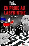 En proie au labyrinthe: T. 1 La lutte - Un roman noir politique