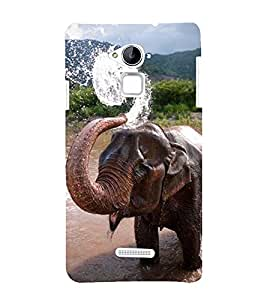 Vizagbeats bathing elephant in lake Back Case Cover for Coolpad Note 3 Lite