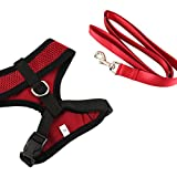ColorPet Reflective Mesh Soft Dog Harness Safe Harness, Breathable and Easy for Walk Medium