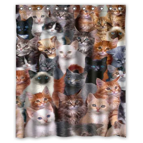 All Kinds of Cats Shower Curtain