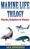 Sharks, Dolphins and Whales: Facts Book For Kids With Amazing Marine Life Pictures (Dad What Are 11)