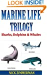 Sharks, Dolphins and Whales: Facts Bo...