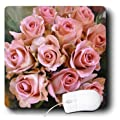 3dRose LLC 8 x 8 x 0.25 Inches Mouse Pad, Pink Rose Bouquet (mp_37239_1)
