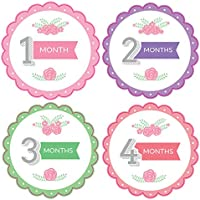 Pinkie Penguin Baby Monthly Stickers - Flowers And Leaves - Milestone Onesie Stickers - 1-12 Months - Baby Girl