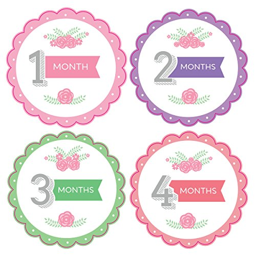 Pinkie Penguin Baby Monthly Stickers - Flowers and Leaves - Milestone Onesie Stickers - 1-12 Months - Baby Girl - 1