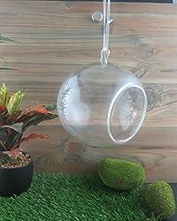importwala Hanging Glass Ball Big