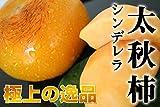 熊本県益城産 福馬果樹園のシンデレラ太秋柿 秀品約2kg 化粧箱入り