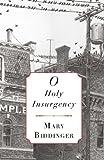 O Holy Insurgency
