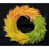 Exotic Creations Candy Cane -Dried flower wreath(L=40 cm X W=40 cm X D= 40 cm)
