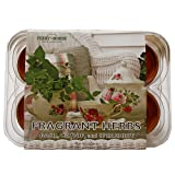 Ferry Morse 831 Fragrant Herb Mini Greenhouse & Seed Kit
