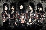Black Veil Brides - leather - Officia...