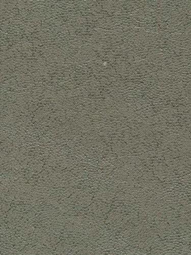 Wallpaper Warner By Brewster Warner Textures Volume Ii Shagreen Slate Wb1065