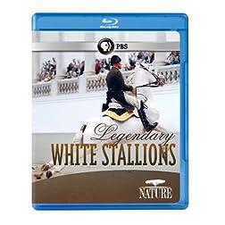 Nature: Legendary White Stallions [Blu-ray]