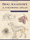 img - for By Robert Kainer Dog Anatomy: A Coloring Atlas book / textbook / text book
