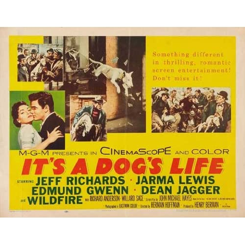 Its A Dogs Life Poster Movie Half Sheet B 22 X 28 Inches 56cm X 72cm Jeff Richards Jarma Lewis