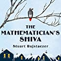 The Mathematician's Shiva (       UNABRIDGED) by Stuart Rojstaczer Narrated by Angela Brazil, Stephen R. Thorne