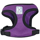 RC Pet Products Cirque Soft Walking Dog Harness, Small, Purple
