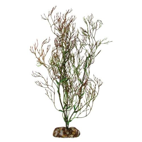 Imagen de Planta de acuario de Coral Aqueon 09850, 11 pulgadas