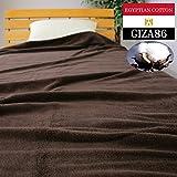 プレミアムコットン 厚織りタオルケット シングルロングサイズ140×200cm 洗うほどにやわらかくなる「育つタオル」 高級エジプト超長綿のGIZA86のみを使用した抜群に肌触りのよいケットです。215EGTK (ブラウン)