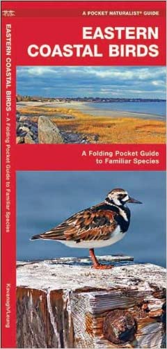 Eastern Coastal Birds: A Folding Pocket Guide to Familiar Species (Pocket Naturalist Guide Series) written by James Kavanagh