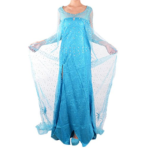 Wraith of East Adult Princess Elsa Halloween Women Party Blue Fancy Dress