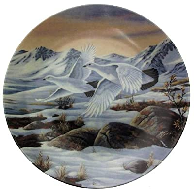 Wilhelm Goebel On Golden Wings Daylight Flight collector plate CP1604