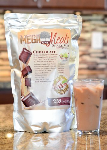 Megaone Chocolate Meal Replacement Shake - Diet & Weight Loss, Energy - Vegan & Vegetarian Protein Powder - Long Shelf Life Natural High Protein Superfoods (1 Pouch) front-60877