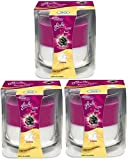 3 x Glade 2in1 Candle - Blackberry Frost and Cream (Limited Edition)