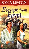 Escape from Egypt: A Novel