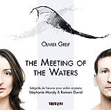 echange, troc  - The Meeting Of The Waters - Intégrale De L'Oeuvre Pour Violon Et Piano