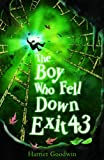 Boy Who Fell Down Exit 43