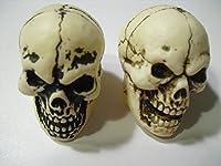 Two Geocache Halloween Skulls by Nevada Madhatters