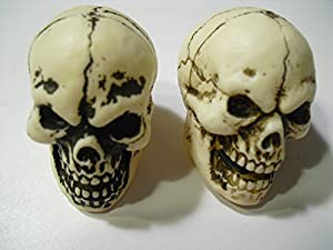 Two Geocache Halloween Skulls by Nevada Madhatters