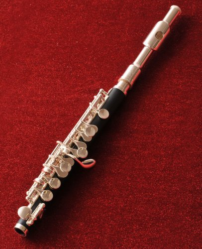 Woodwind Instruments Lesson Plans and Lesson Ideas