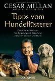 Tipps vom Hundeflüsterer: Einfache Maßnahmen für - Preisverlauf