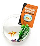 "#1 Goldfish Bowl & Betta Fish Bowl - Wall Mounted Bubble Tank - Aquarium - Hanging Terrarium - Includes ""Lets Get Started Guide"" - 10 in Diameter - Acrylic - by Stanton Collections™"