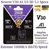 Amplim 256GB Micro SD Card Plus Adapter Pack 256 GB MicroSD SDXC V30 U3 A1 Class 10 Extreme Pro Speed 100MB/s UHS-I UHS-1 TF XC MicroSDXC Memory Card for Cell Phone, Nintendo, Galaxy, Fire, Gopro (Color: V30 Purple, Tamaño: MicroSD)