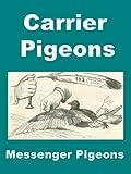 Carrier Pigeons Messenger Pigeons