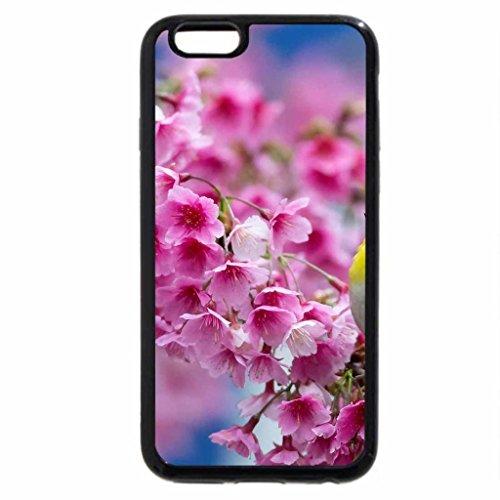 iphone-6s-iphone-6-motivo-alberi-di-fioritura-colore-nero